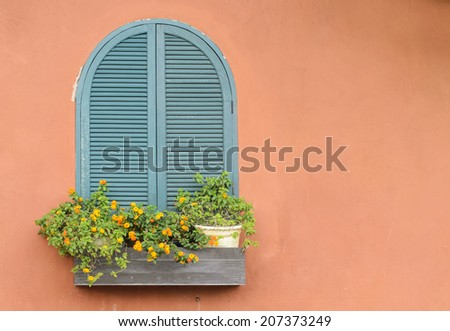 Window with flower - stock photo