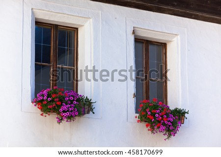 Window with flowerpots and colorful flower on a white wall