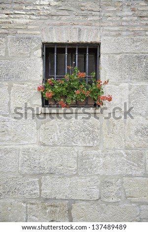 Window with flowers, detail of an old window with flower decoration, exploration in detail in the city - stock photo