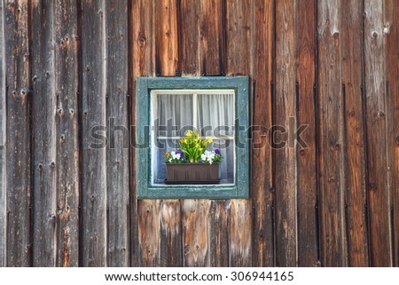 window with flowers on wooden wall background  - stock photo