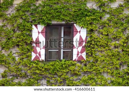 Window with ivy - stock photo