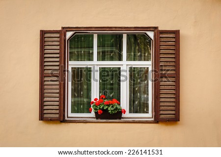 Window with shutters and flower