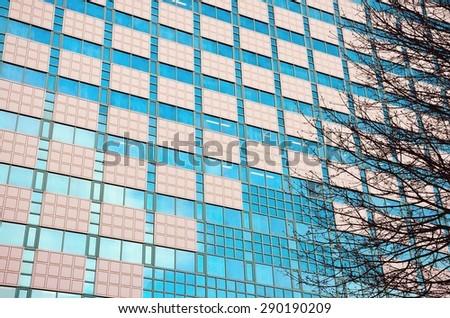 Windows on building, tree and sky - stock photo