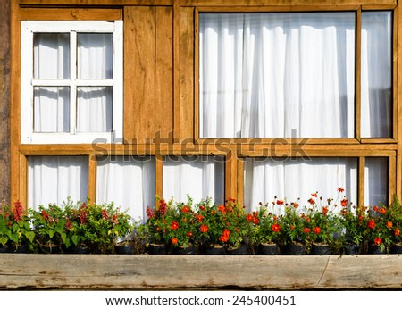 Windows on wooden wall with flowers - stock photo