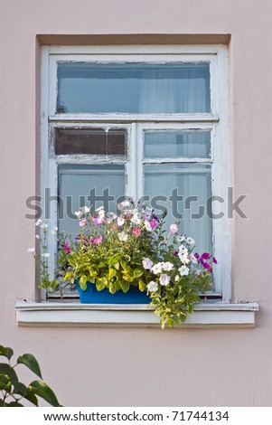 Windows with flowerboxes - stock photo