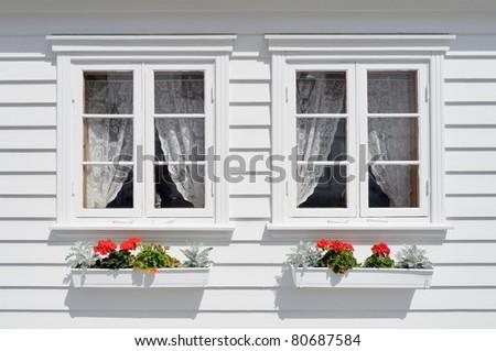 Windows with flowers - stock photo