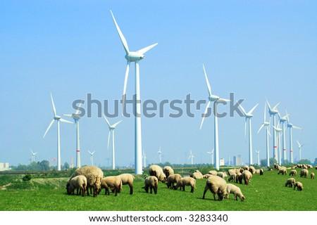 Windpark in East Frisia - stock photo