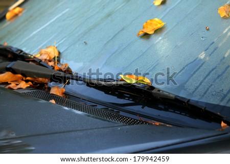 Windshield wiper - stock photo