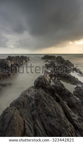Windstorm. Composition of nature. - stock photo