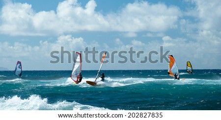 Windsurfers in windy weather on Maui Island panorama - stock photo