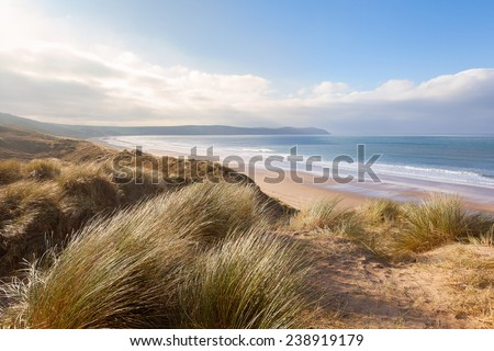 Windswept grass on the sand dunes above Woolacombe beach in North Devon, England