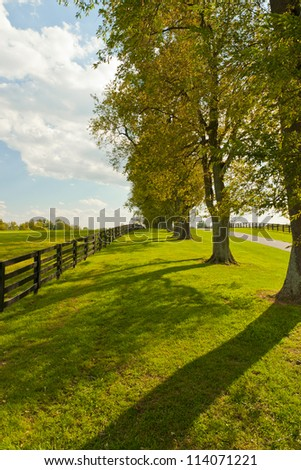 Windy day at country on beginning of autumn season - stock photo
