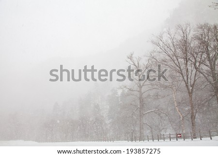 windy snowing day, Sounkyo valley, Hokkaido, Japan - stock photo