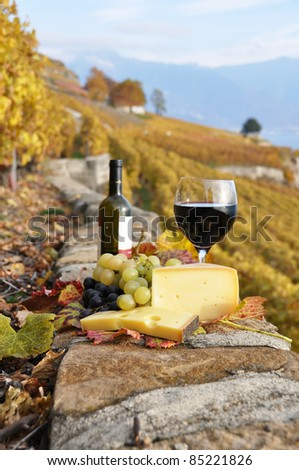 Wine and  grapes  against vineyards in Lavaux region, Switzerland - stock photo