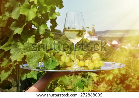 Wine and grapes against vineyards in Rheinau, Switzerland - stock photo