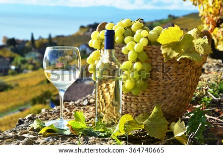 Wine and grapes.Lavaux region, Switzerland - stock photo