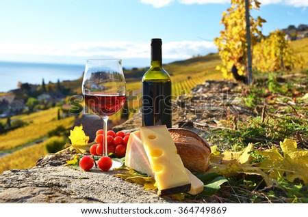 Wine and grapes. Lavaux region, Switzerland - stock photo