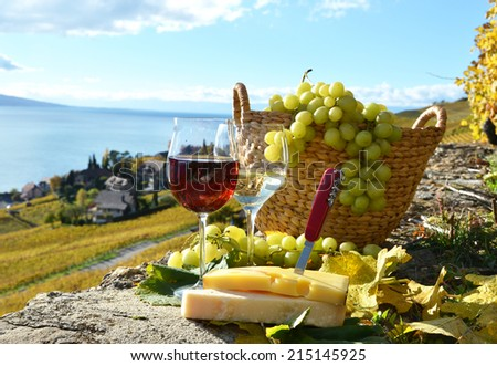Wine and grapes. Lavaux, Switzerland  - stock photo