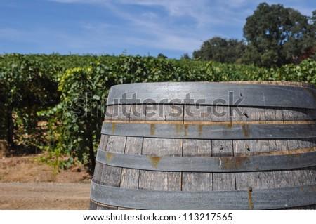 Wine Barrel and Vineyard - stock photo