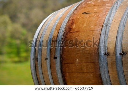 Wine Barrel with Green Vineyard Background - stock photo