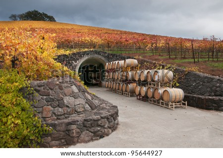 Wine Barrels and the Cave - stock photo