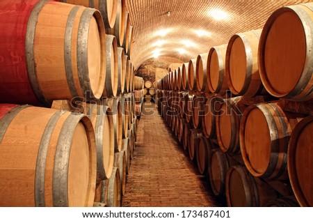 Wine barrels in order  - stock photo