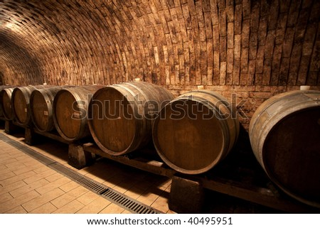 Wine barrels in the cellar (south moravia)
