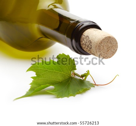 wine bottle and green grape vine - stock photo