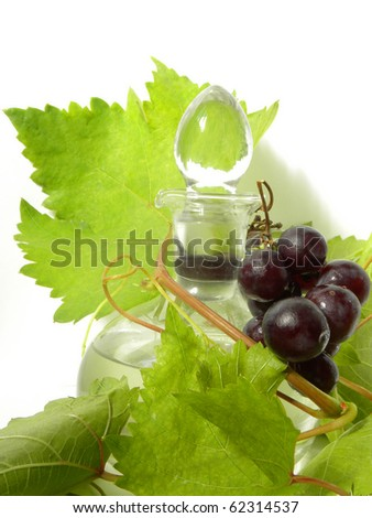 wine carafe and young grape vine branch isolated on a white background - stock photo