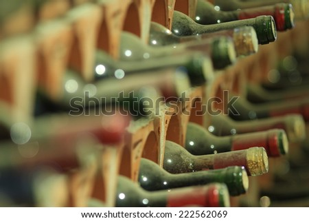 Wine cellar bottles covered with dust macro