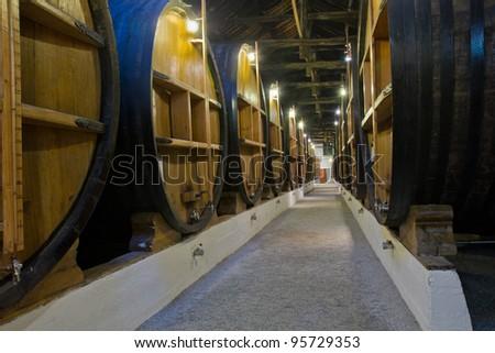 wine cellar with big wine barrels - stock photo
