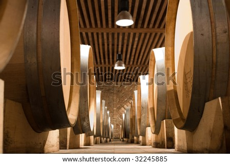 wine cellar with wooden barrels - stock photo