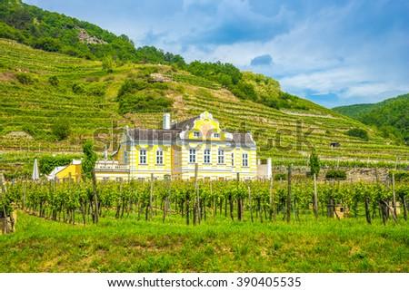 Wine Domain, Wachau, Duernstein, Kellerschloessel, baroque,  - stock photo