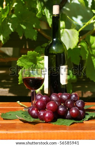 Wine glass, grapes and bottle in garden - stock photo