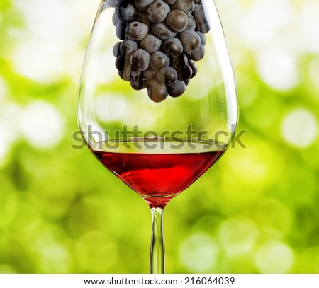 Wine glass with grape on nature background - stock photo