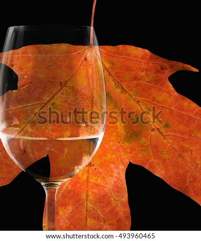 wine glass with vibrant orange autumn maple leaf on black