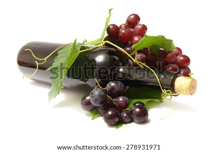 Wine grape         - stock photo