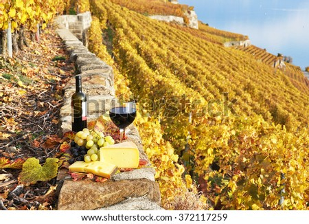 Wine, grapes and cheese against vineyards in Lavaux region, Switzerland - stock photo