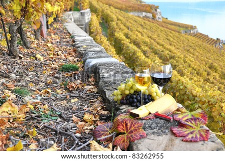 Wine, grapes and cheese against vineyards in Lavaux region, Switzerland