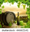 Wine, grapes and grapevine composition in vineyard - stock photo