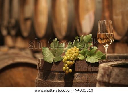 Wine Grapes in a Wine Cellar - stock photo