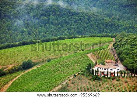 Wine in Tuscany, Italy - stock photo