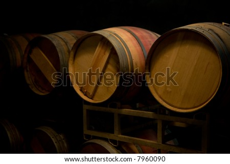 Wine Makers cellar - stock photo