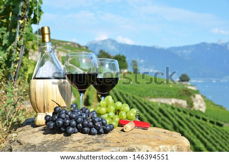 Wine on the terrace vineyard in Lavaux region, Switzerland - stock photo