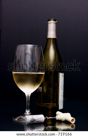 Wine w/bottle - stock photo