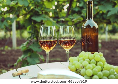 Wine with cheese on table in vineyard
