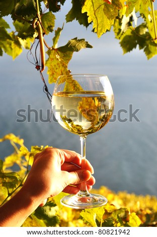 Wineglases in the hand against vineyards in Lavaux region, Switzerland - stock photo