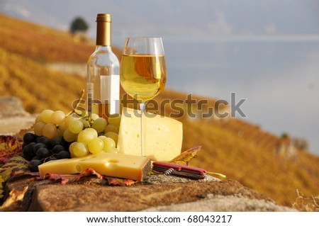 Wineglass and a bottle on the terrace vineyard in Lavaux region, Switzerland