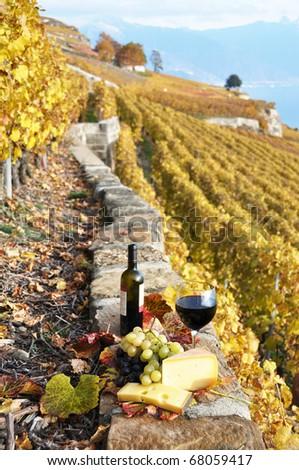 Wineglass and a bottle on the terrace vineyard in Lavaux region, Switzerland - stock photo