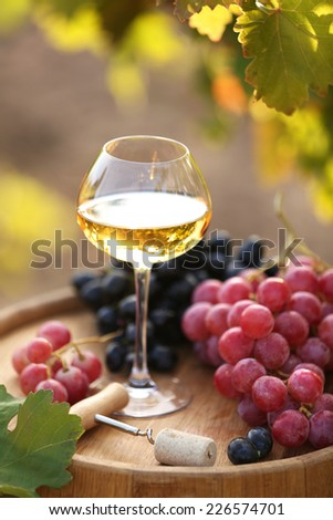 Wineglass and grape on wooden barrel on grape plantation background - stock photo